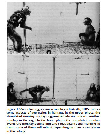 Selective aggression in monkeys elicited by DBS